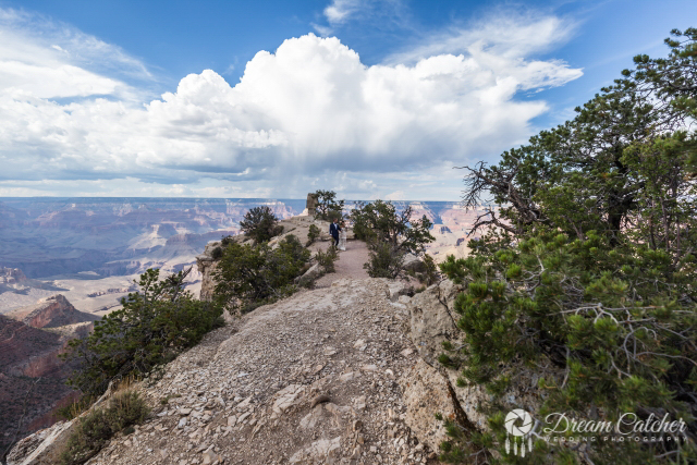 Shoshone Point Grand Canyon (5)